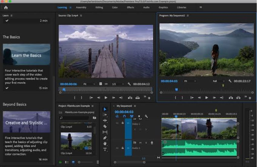Adobe premiere 2020 price